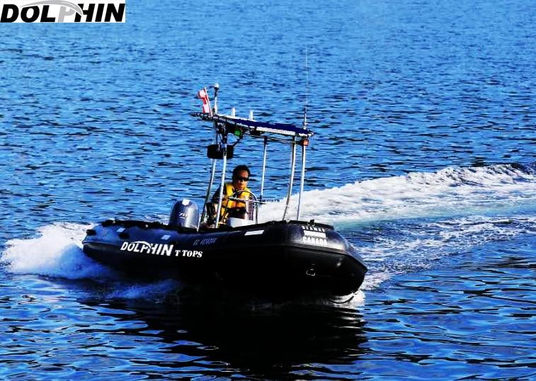 [해외]Q & t 한정 돌핀 프로 T 탑 - 중소형 보트 네이비 블루 스트랩 캐노피/Q&ty Limited Dolphin Pro T Top - Small Medium Size Boat Navy Blue Strap Canopy